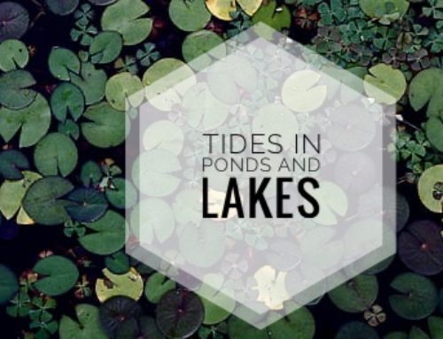 The Truth About Tides In Ponds And Lakes
